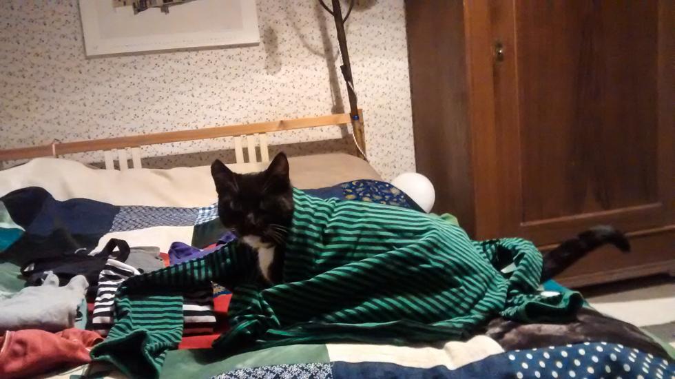Piri in gestreiftem Pullover