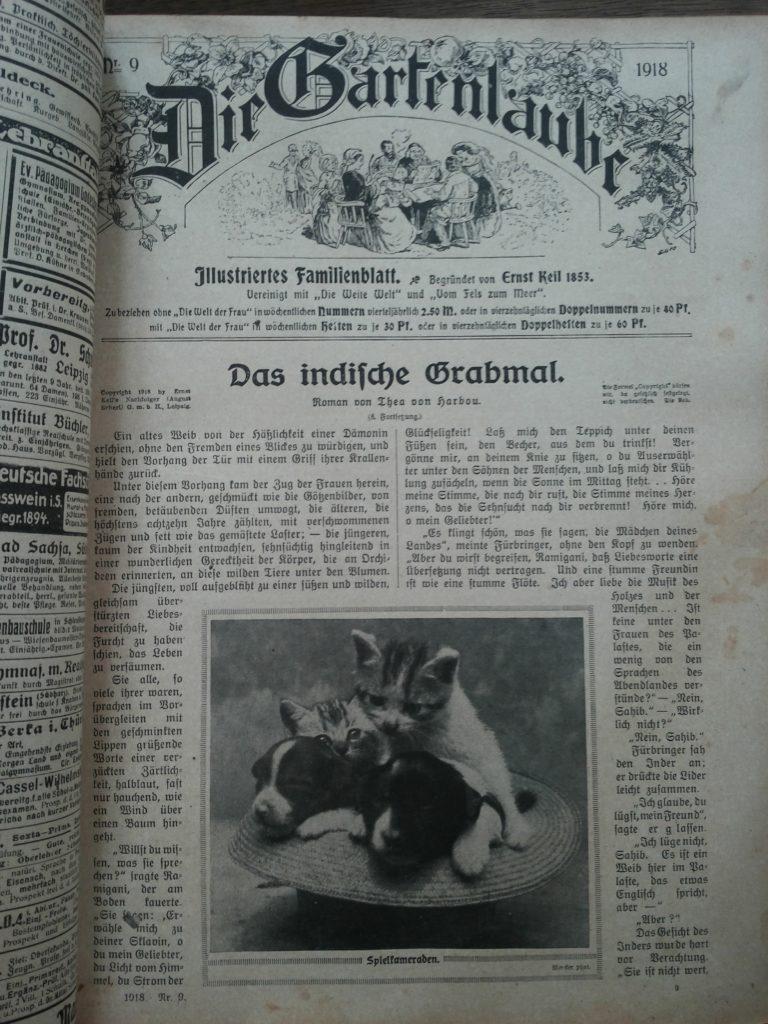 """Eine Seite aus der Zeitschrift """"Die Gartenlaube"""" von 1918. Darauf befindet sich unter Anderem ein Bild, auf dem 2 Welpen sowie 2 Katenbabies in einem Strohhut sitzen."""