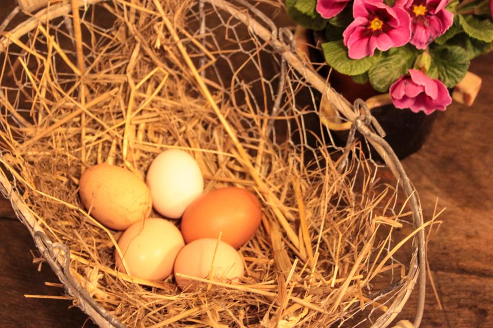 Kleine Eier im Strohkorb